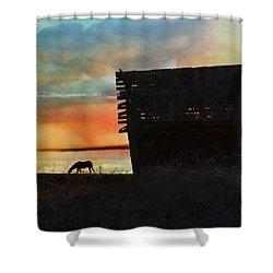 B. C. Barn # 1672 Shower Curtain