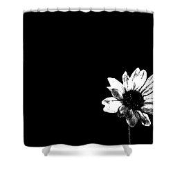 B/w Flower  Shower Curtain