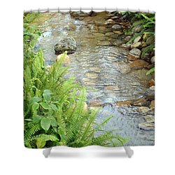 Babble Brook Shower Curtain by Amanda Eberly-Kudamik