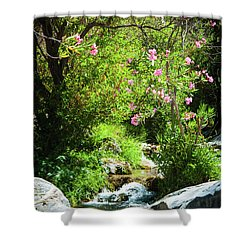 Babbling Brook Shower Curtain