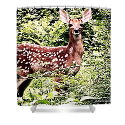Babe In The Woods Shower Curtain