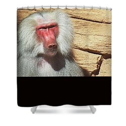 Shower Curtain featuring the photograph Just Walk Away by Cathy Harper