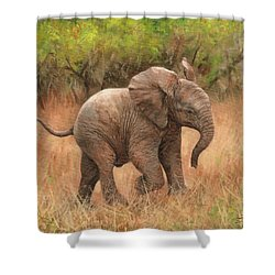 Baby African Elelphant Shower Curtain
