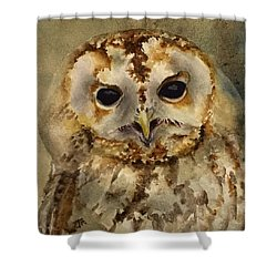 Baby Barred Owl Shower Curtain