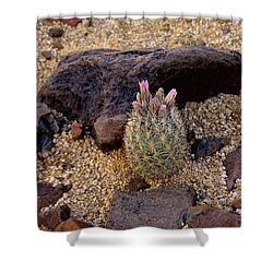 Baby Barrel Cactus Shower Curtain