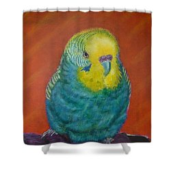Shower Curtain featuring the painting Baby Blue by Amelie Simmons
