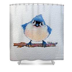 Baby Bluebird Shower Curtain by Marcia Baldwin