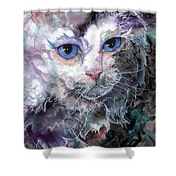 Shower Curtain featuring the painting Baby Blues by Sherry Shipley