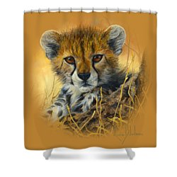 Baby Cheetah  Shower Curtain by Lucie Bilodeau