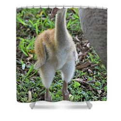 Baby Crane At A Month Old Shower Curtain