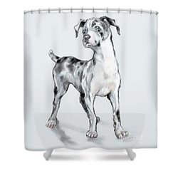 Baby Dane Shower Curtain