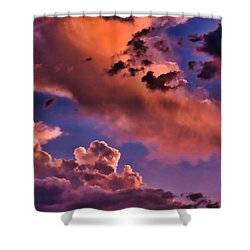Baby Dragon's Fledgling Flight Shower Curtain