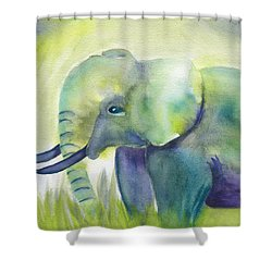 Baby Elephant Shower Curtain by Frank Bright