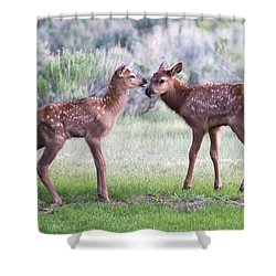 Baby Elk Shower Curtain