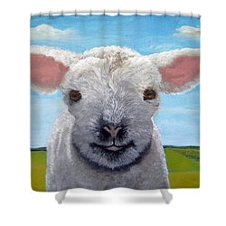 Baby Farm Lamb Sheep  Shower Curtain