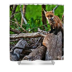 Baby Fox Shower Curtain