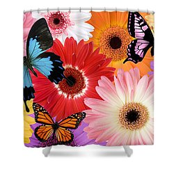 Summer's Desgn Shower Curtain