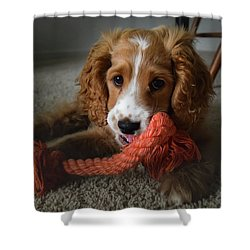 Baby Gizmo Shower Curtain