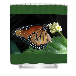 Baby Monarch Macro Shower Curtain
