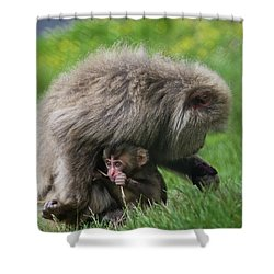 Baby Monkey Shower Curtain