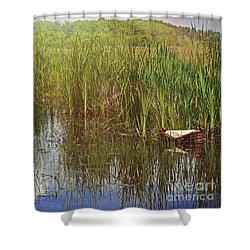 Baby Moses In The Rushes Shower Curtain by Liz Masoner