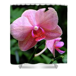 Baby Pink Orchid Shower Curtain by Mini Arora