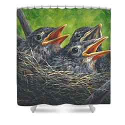 Baby Robins Shower Curtain
