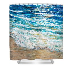 Baby Sea Turtles Iv Shower Curtain