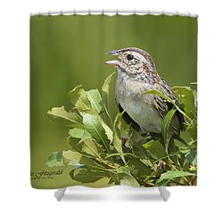 Bachman Sparrow Shower Curtain