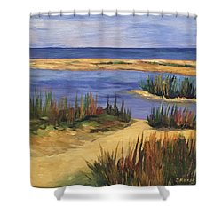 Back Bay Beach Shower Curtain
