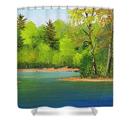 Shower Curtain featuring the painting Back Country Pond by Frank Wilson