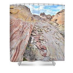 Back Country Valley Of Fire Shower Curtain