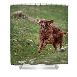 Back In Game Shower Curtain