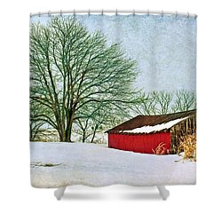 Back In The Day Shower Curtain by Nikolyn McDonald