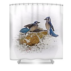 Back Off Shower Curtain by MTBobbins Photography