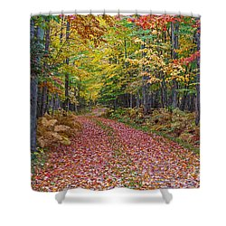 Back Road Color Tour  Shower Curtain