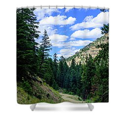 Back Roads Shower Curtain