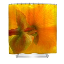 Back Side Shower Curtain
