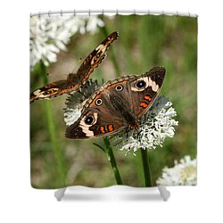 Back To Back Butterflies Shower Curtain by Sheila Brown