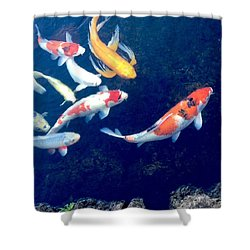Back To School Shower Curtain by Russell Keating