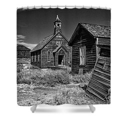 Back To The Past Shower Curtain by Sandra Bronstein