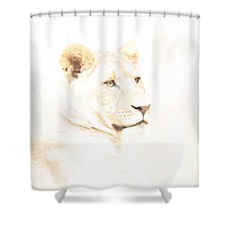 Shower Curtain featuring the photograph Back To You And Me Like It Used To Be by Wade Brooks