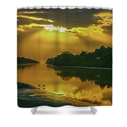 Back Up Reflection Shower Curtain