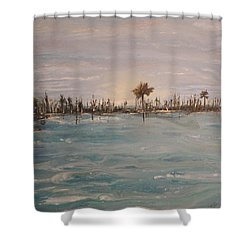 Backbay No. 403 Shower Curtain