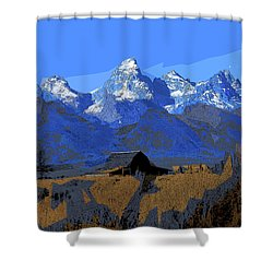 Backdrop Shower Curtain