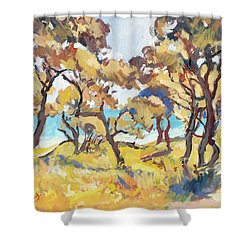 Backlight Olive Trees Marmari Beach Shower Curtain