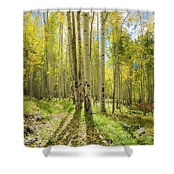 Backlit Aspen Trail Shower Curtain