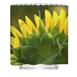 Backlit Beauty Shower Curtain