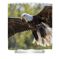 Backlit Eagle Shower Curtain