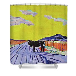 Backroads Abiquiu, New Mexico Shower Curtain